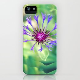 Searching For Sanity iPhone Case