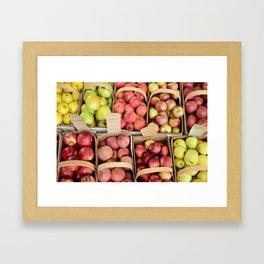 Apple Spectrum Framed Art Print