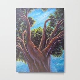 A Tree Grows in Almeria AC151025a-13 Metal Print