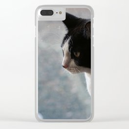 Soft Portrait of Cat Clear iPhone Case