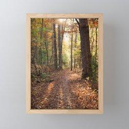 Nature's Gold Framed Mini Art Print