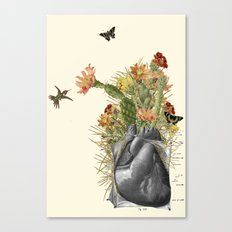 thorns anatomical heart collage by bedelgeuse Canvas Print