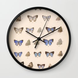 Vintage Hand Drawn Scientific Illustration Insects Butterfly Anatomy Colorful Wings Wall Clock