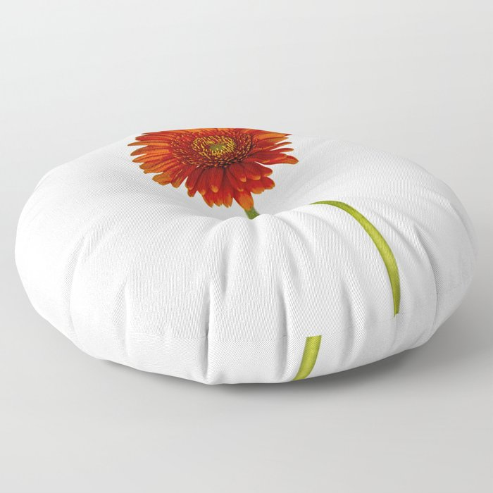 Gerbera Floor Pillow