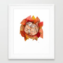 Squirrel Spoon Framed Art Print