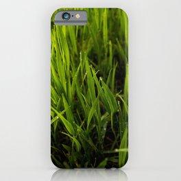 Green Grass iPhone Case
