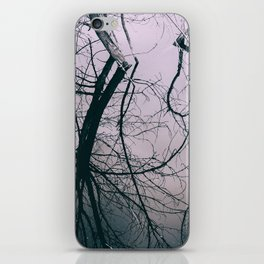 Tree in Cloud Reflection iPhone Skin