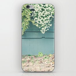 Shabby Chic Art, French Courtyard with mint wood wall, autumn leafs and tiny flowers iPhone Skin