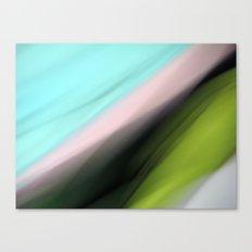 Liquorice Allsort Canvas Print