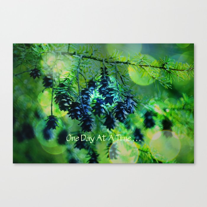 One Day At A Time . . . Canvas Print