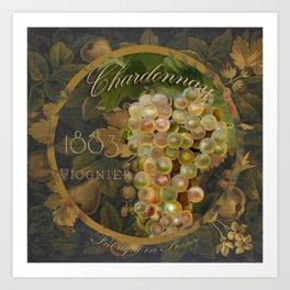 Wines of France Chardonnay Art Print