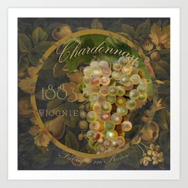 Wines of France Chardonnay Art Print