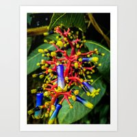 chemistry Art Prints featuring Chemistry by Jonathan Ramanujam
