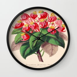 Impatiens gordonii Vintage Botanical Floral Flower Plant Scientific Illustration Wall Clock