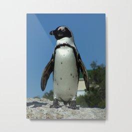 A Little Bit More Penguin Metal Print