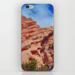 Red Rock Hike iPhone Skin