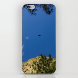 Peregrine to Tower iPhone Skin