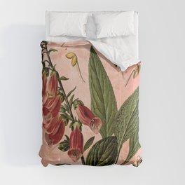 Vintage Botanical Illustration Collage, Foxgloves, Digitalis Purpurea Comforters