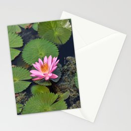 Water Lily, I Stationery Cards