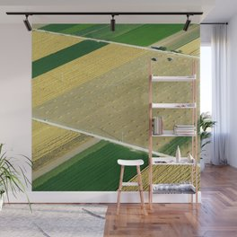 Aerial Geometries. Cereal Fields From The Air Wall Mural