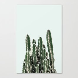 Blue Sky Cactus Canvas Print