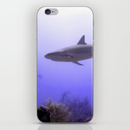 Swimming Shark iPhone Skin