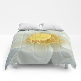 Lotus Comforters