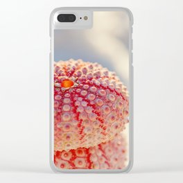 Pink Sea Urchins Clear iPhone Case