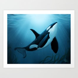 """The Dreamer"" by Amber Marine ~ Orca / Killer Whale Art, (Copyright 2015) Art Print"
