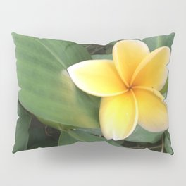 Plumeria Pillow Sham