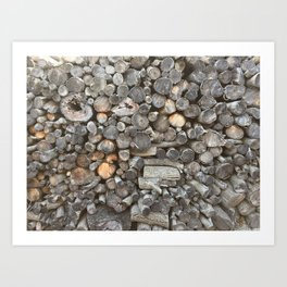 Log pile Art Print