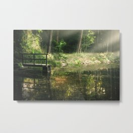 Calm forest Metal Print