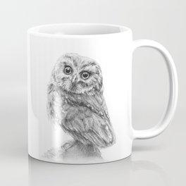 The Northern Saw-whet Owl Coffee Mug