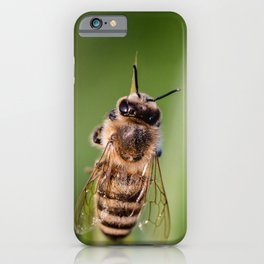 Hover Fly Bee iPhone Case