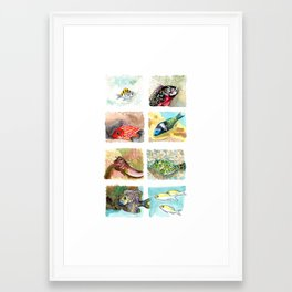 Cirrus/ Coral fish Framed Art Print