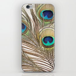 Exquisite Renewal iPhone Skin
