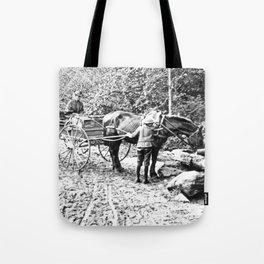 Vintage Adirondacks: The Roadside Watering Trough Tote Bag
