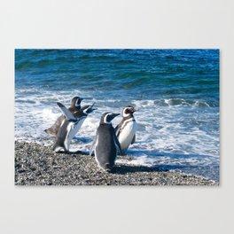 Penguin clique Canvas Print