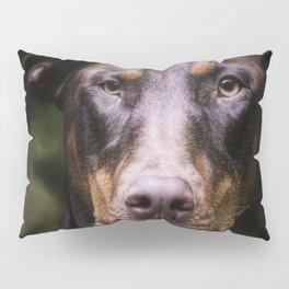 Red Dobie Pillow Sham