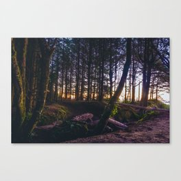 Wooded Tofino Canvas Print
