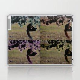 Greedy Squirrel II Laptop & iPad Skin