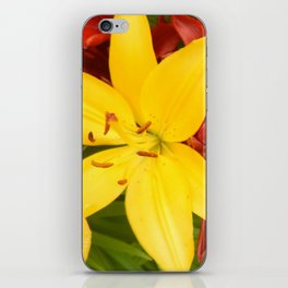 """""""A Gathering of Lilies"""" - 3 [D4468~49] iPhone Skin"""