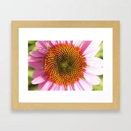 Flower Fractal Framed Art Print