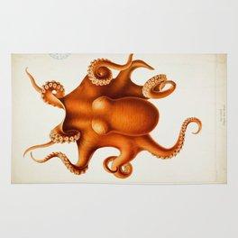 Octopus Cephalopod 1915 Rug