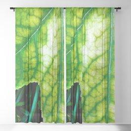 Macro Leaf Sheer Curtain