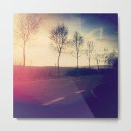 trees beside the road Metal Print