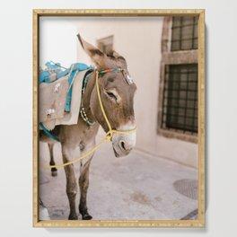 Santorini 0009: Donkey in Pyrgos, Santorini, Greece Serving Tray