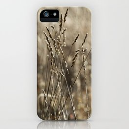 Wild meadow grass in winter iPhone Case