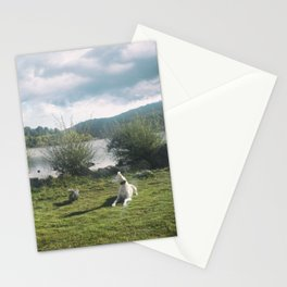 A rest in the reservoir Stationery Cards