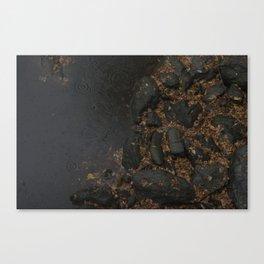 Black River Canvas Print